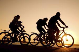 Bicycle Rental Jaffna